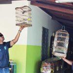 FPI apreende pássaros silvestres em funerária de Porto da Folha