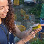 FPI devolve 555 animais à natureza na primeira semana de fiscalização