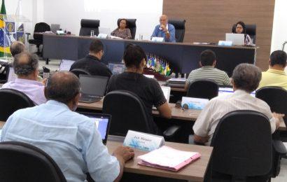 Sessão plenária destaca realização do CEP-SE no dia 25 de julho