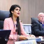 Criação do Programa Mulher do Sistema Confea/Crea é aprovada em plenário