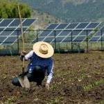 Crea-SE alerta que medida da Aneel vai inviabilizar a expansão da energia renovável